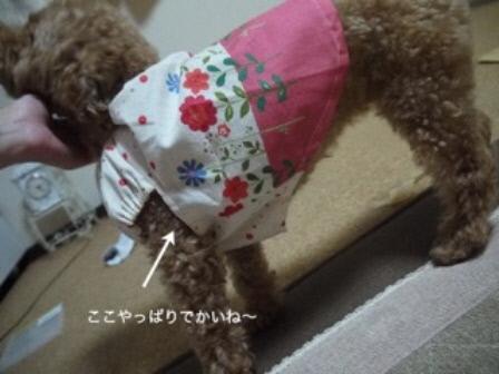 袖ぐり(1)