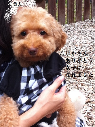 IMG_5433.jpg