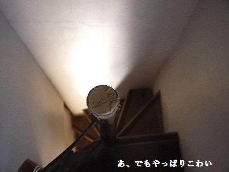 P1180573(1).jpg
