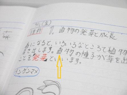 P1180721(1).jpg