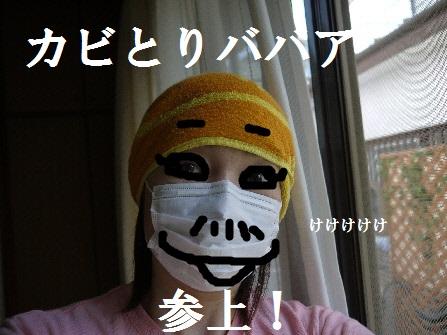 P1190380(1).jpg