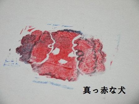 P1200004(1).jpg