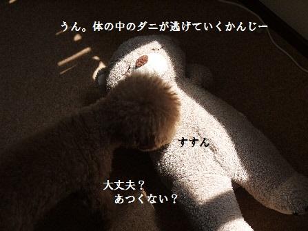 P1210537(1).jpg