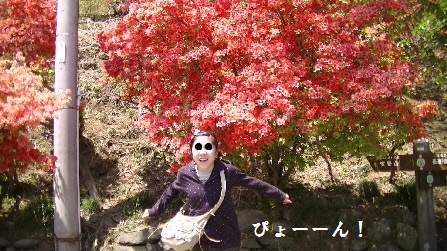 PIC_0243(1).jpg