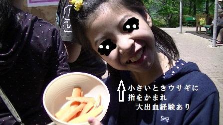 PIC_0246(1).jpg