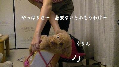 PIC_0819(1).jpg