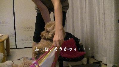 PIC_0820(1).jpg