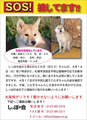 komugimira3-24c26-thumbnail2.jpg