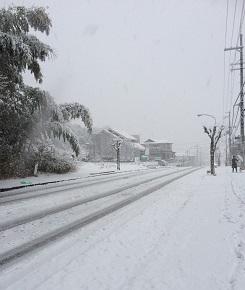 20140214yuki1.jpg