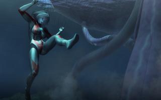 JellyFish(2)1.jpg