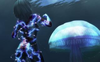 JellyFish(5)2.jpg