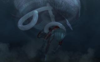 JellyFish(9).jpg