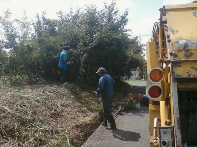 草刈り・ゴミ回収