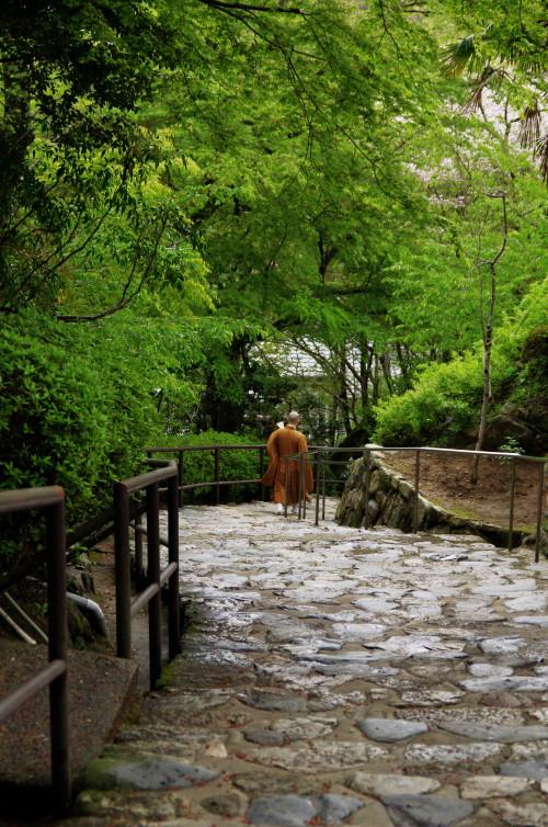長谷寺 石段