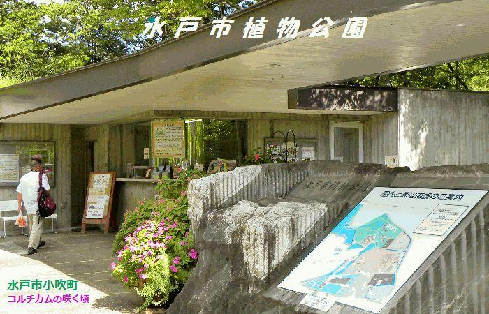 水戸市植物公園
