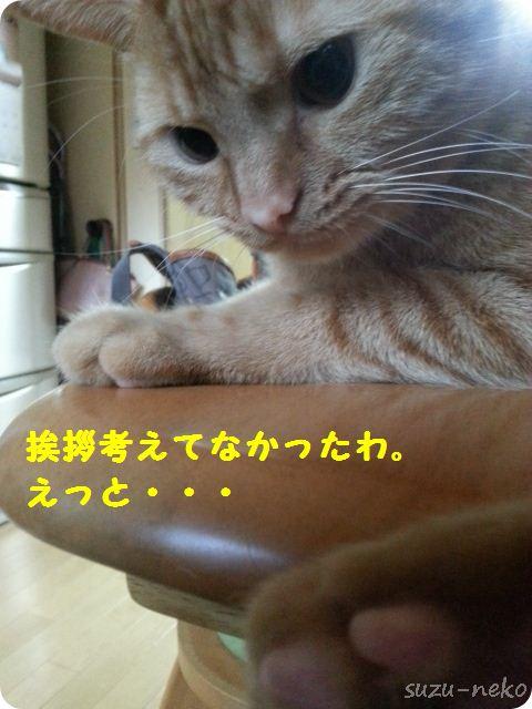 20130717_124311.jpg