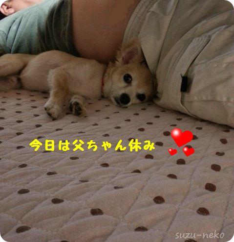 父ちゃん休みぃ~