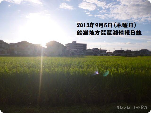 2013年9月5日の稲造