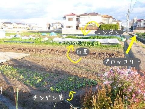 20131210-007.jpg