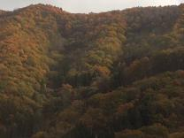 高山線紅葉1