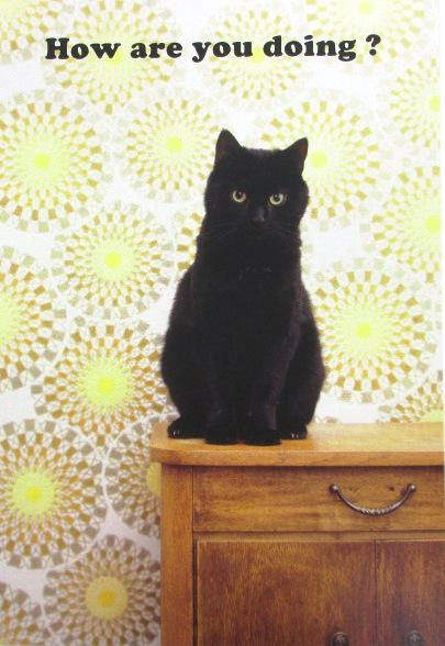 ACポスカ黒猫