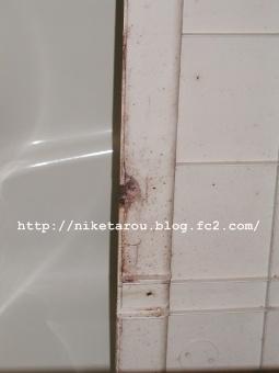 浴槽掃除13