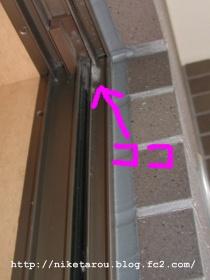 蜘蛛の巣除去2