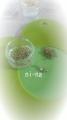 DCF00024_2013102616531361d.jpg