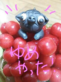 moblog_bdbf0069.jpg