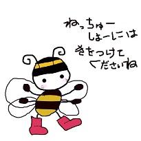 ssshachi.jpg