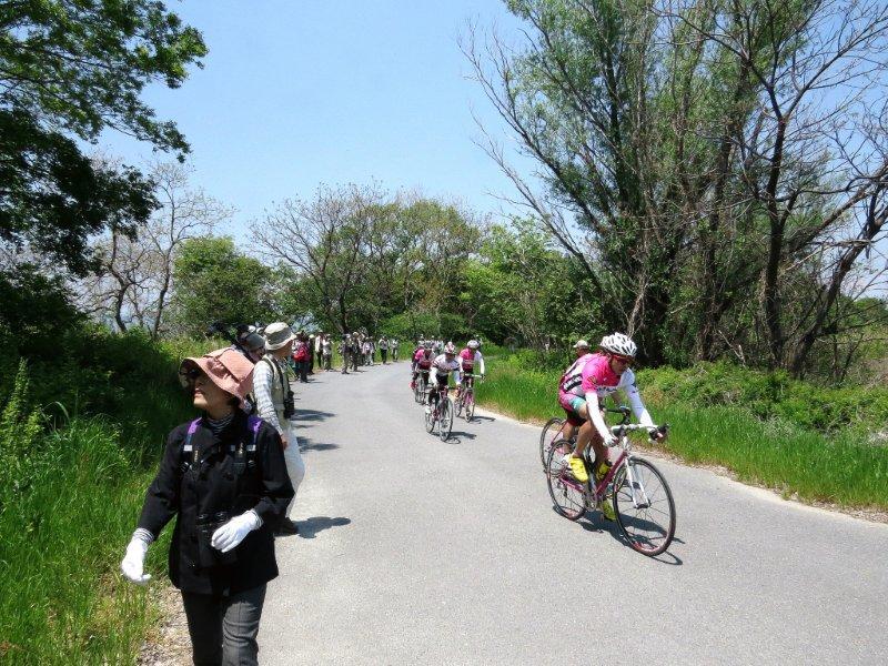 IMG_2334探鳥会風景、自転車
