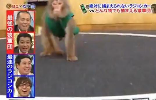 ほこ た て やらせ ラジコン サル