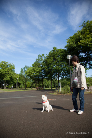 20130512-_MG_8380.jpg