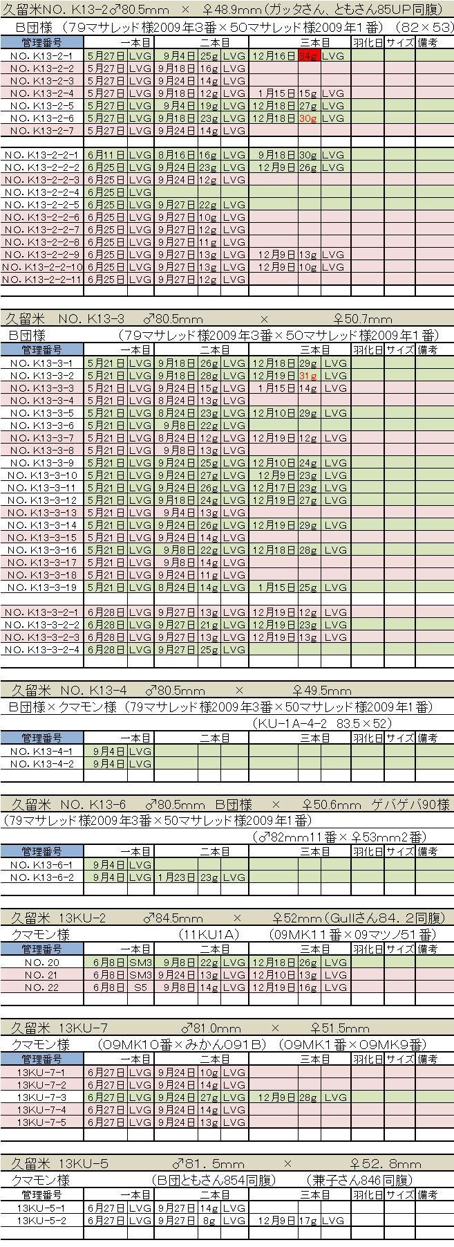2013久留米