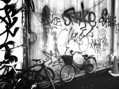 wall1119.jpg