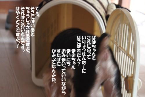 IMG_0222_20130825102726f2b.jpg