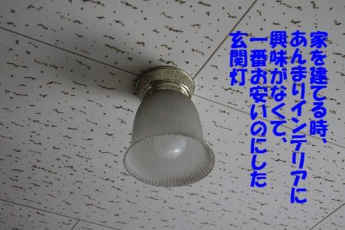 IMG_0373_2013083022092237f.jpg
