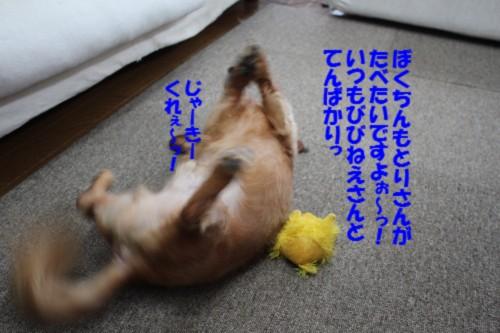 IMG_0840_20130926140632fa9.jpg