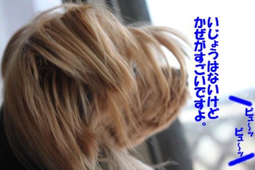 IMG_1197_20131016123241386.jpg