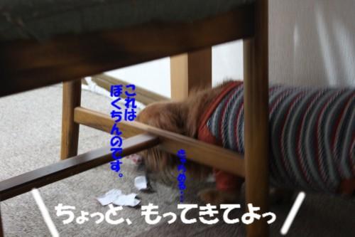IMG_1263_201310171650157a3.jpg