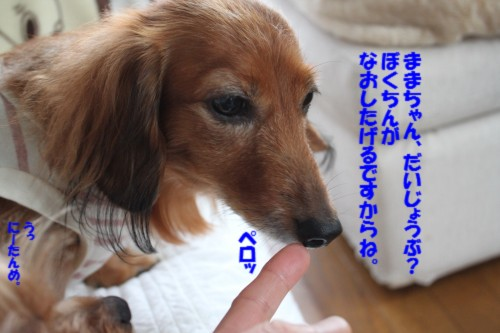 IMG_1359_20131022100032d1b.jpg