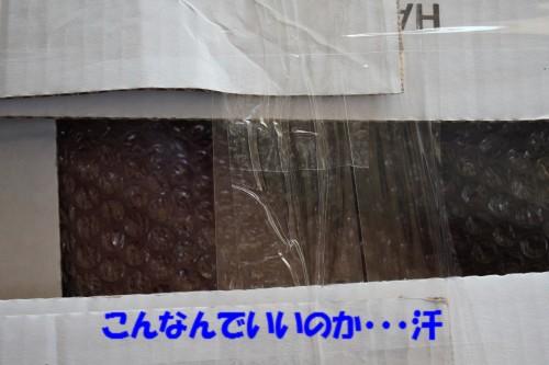 IMG_1736_201311121357126c7.jpg