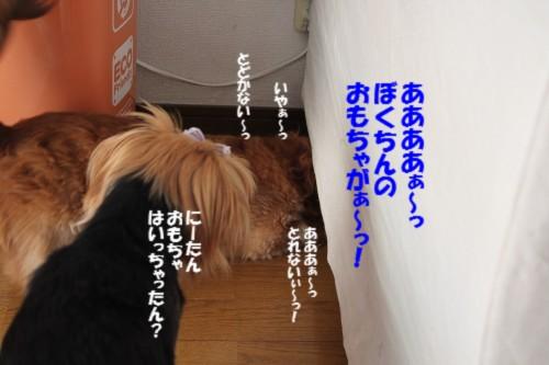 IMG_7807.jpg