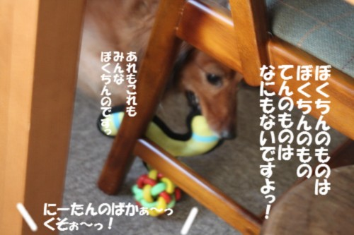 IMG_7882.jpg