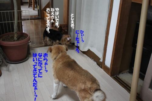 IMG_8166.jpg