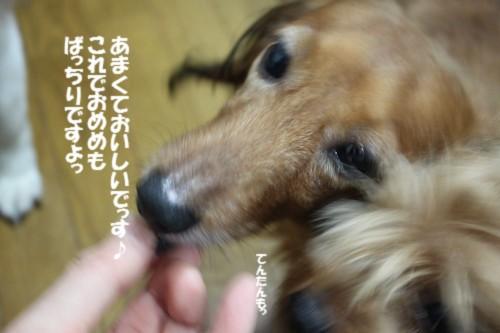 IMG_9462.jpg