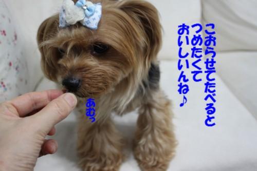 IMG_9602.jpg