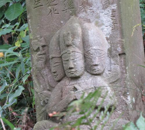 田中山ー41