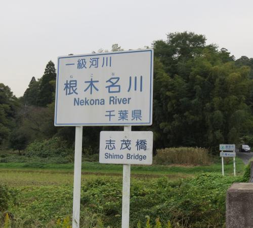 根木名川ー24