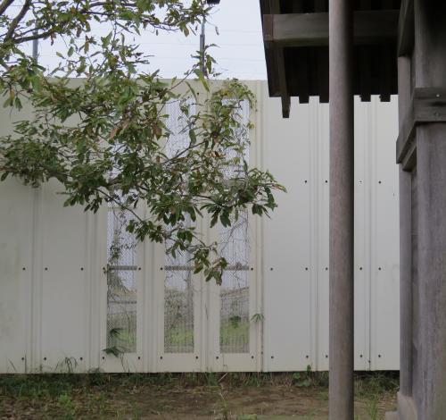 東峯神社ー24